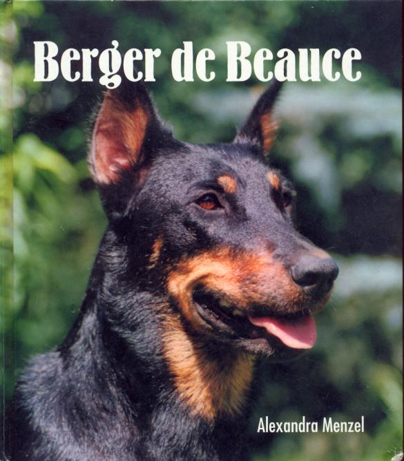 Книга о босеронах на немецком языке