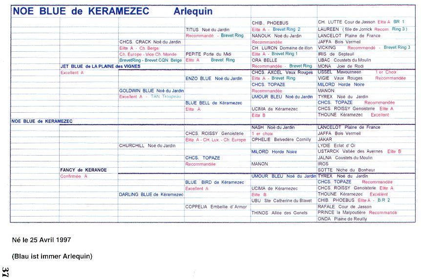 Книга про босеронов Александры Менцель