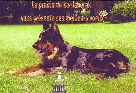 Victor Blue De La Prairie Kardaberak (Виктор)