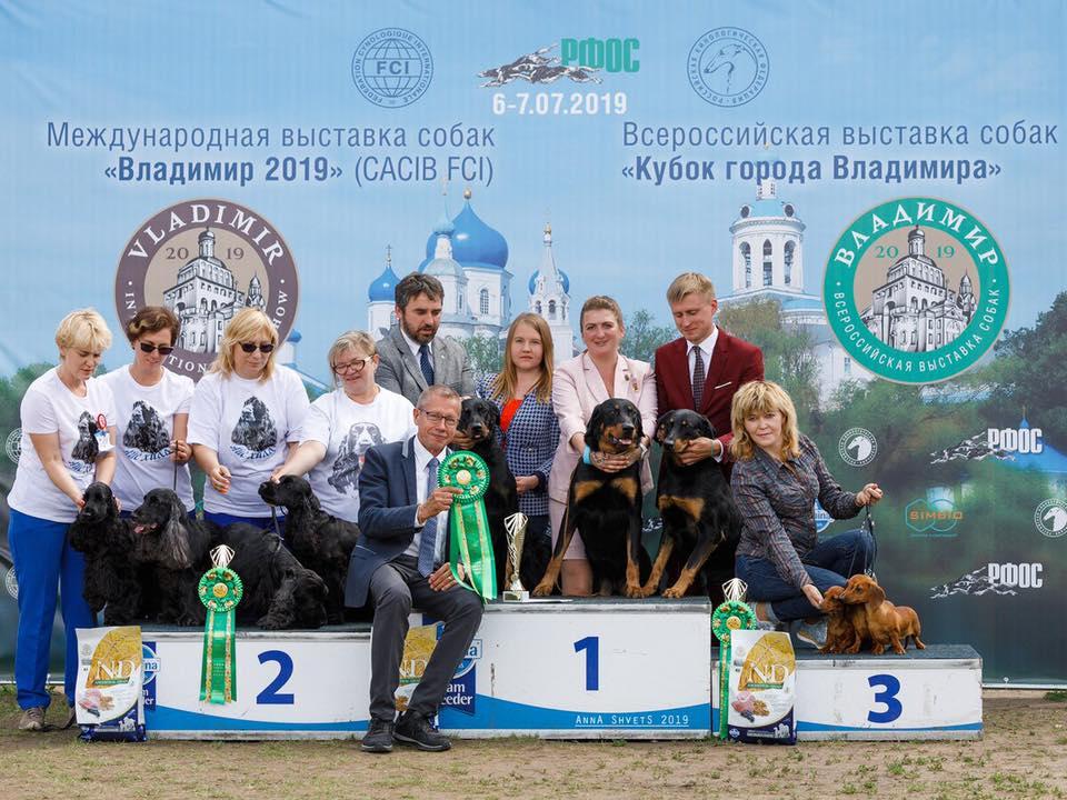 Владимир 2019